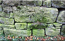 SE0339 : Benchmark on wall of Branshaw Golf Course by Roger Templeman