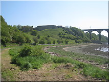 NT9953 : Berwick Castle above the River Tweed by Jonathan Thacker