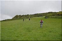 SX4952 : South West Coast Path, Jennycliff by N Chadwick