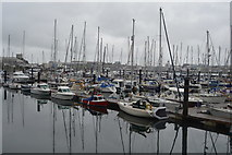 SX4953 : Plymouth Yacht Haven by N Chadwick