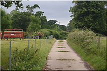 TQ3228 : Track to Batchelor's Cottage by N Chadwick