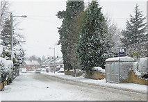 SO9095 : Snowing on Mount Road in Penn, Wolverhampton by Roger  Kidd