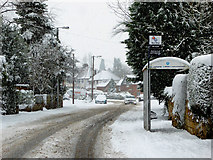 SO9095 : Redundant Mount Road bus stop in Penn, Wolverhampton by Roger  Kidd