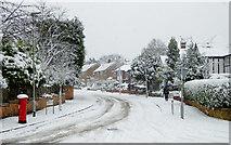 SO9095 : A snowy Sandringham Road in Penn, Wolverhampton by Roger  Kidd