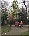 TQ3276 : Delivering mail by tricycle, St Giles' Churchyard, Camberwell, south London by Robin Stott