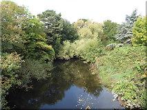 SX8672 : The River Teign, Newton Abbot by Chris Allen
