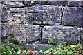 SE0339 : Benchmark on Slaymaker Lane wall by Roger Templeman
