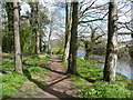 NS3521 : Riverside path approaching the end of the woodland, Craigie Estate, Ayr by Humphrey Bolton