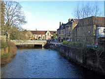 SU1429 : River Avon, Salisbury by Robin Webster