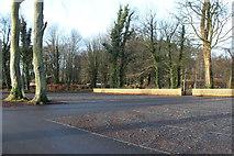 NS2209 : Car Park at the Swan Pond, Culzean by Billy McCrorie