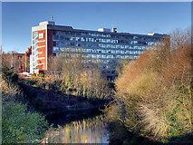 SJ8298 : Salford University, The Maxwell Building by David Dixon