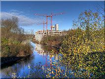 SJ8298 : New Building on the Irwell by David Dixon