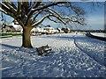 SO7844 : Snow on Malvern Common by Philip Halling
