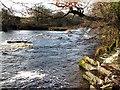 NZ1014 : Where waters combine : Week 51