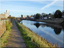 TM1543 : Gipping Valley River Path, Ipswich by Robin Webster
