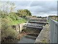 SX8772 : Former lock behind Newton Abbot Racecourse by Chris Allen