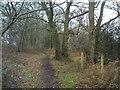 SO8393 : Ridge Path by Gordon Griffiths