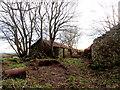 C9236 : Carragh Road (1) by Robert Ashby