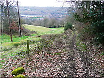 SE0722 : Hollas Lane (Sowerby Bridge Bridleway 81), Norland by Humphrey Bolton