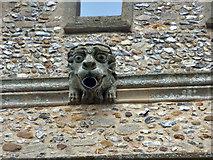 TL5234 : Gargoyle, Newport church tower by Robin Webster