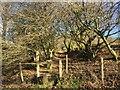 SS8791 : Public Footpath at Blaen Cwmdu by Alan Hughes