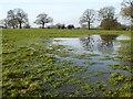 SP0475 : Waterlogged farmland by Philip Halling