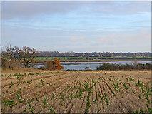 TM2844 : Across the River Deben by John Sutton