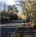 TQ3539 : Copthorne Road by Chris Thomas-Atkin