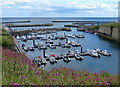 NZ4349 : Seaham Harbour Marina by Mat Fascione