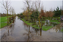 SK1814 : Flooded paths at the National Memorial Arboretum by Bill Boaden
