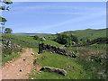 NY6335 : Farm track below farm at Fellside by Trevor Littlewood