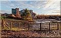 NH6543 : Derelict Sawmill by valenta