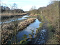 SE3308 : Winter mud on the Barnsley Canal towpath by Christine Johnstone