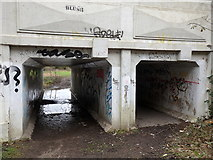 SP3065 : Princes Drive bridge underpass, Leamington by Rudi Winter