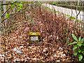 NN0560 : Loch Leven fundamental bench mark by Trevor Littlewood