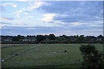 TQ5747 : Near Hawden Farm by N Chadwick