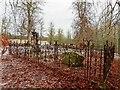 NH5154 : Seaforth Burial Ground by valenta