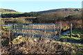 NX0765 : The Several Burn Bridge by Billy McCrorie