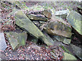 SE2333 : Possible old adit entrance in Post Hill woods - detail by Stephen Craven