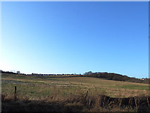 SE2332 : Fields west of Pudsey Beck at Troydale by Stephen Craven