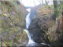 NY4020 : Aira Force by Peter S