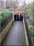SP3265 : Path through Jephson Gardens, Leamington by Rudi Winter