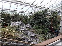 SP3265 : Inside the Glass House, Jephson Gardens, Leamington by Rudi Winter