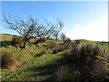 SS9985 : On the Taff Ely Ridgeway walk - view east by Gareth James