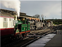 TQ4023 : At Sheffield Park by Peter Trimming