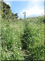 TA1575 : Footpath at Speeton Gap by Graham Robson