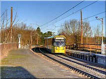 SD7807 : Tram Arriving at Radcliffe by David Dixon