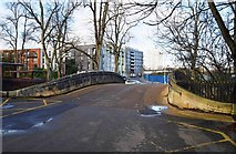 SP0683 : Bridge over the River Rea, Cannon Hill Park, Edgbaston, Birmingham by P L Chadwick