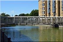 TQ3680 : Former Nelson Dock by N Chadwick