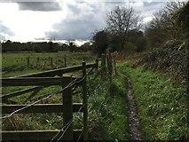 SU4517 : Itchen Way by Shaun Ferguson